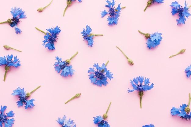 Arranjo de flores planas Foto gratuita