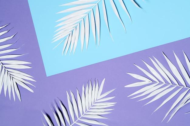 Arranjo de folhas de palmeira branca Foto Premium