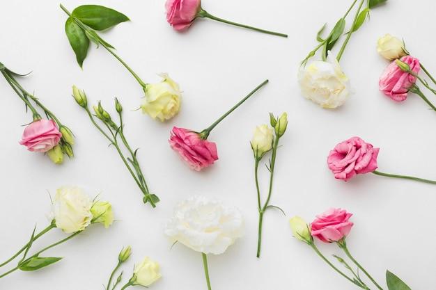 Arranjo de mini rosas plana leigos Foto gratuita