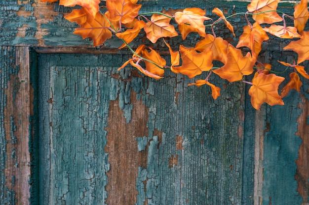 Arranjo de porta velha arranhada com folhas Foto gratuita