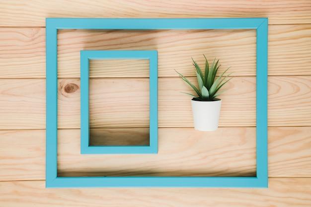 Arranjo de quadros azuis com uma planta Foto gratuita