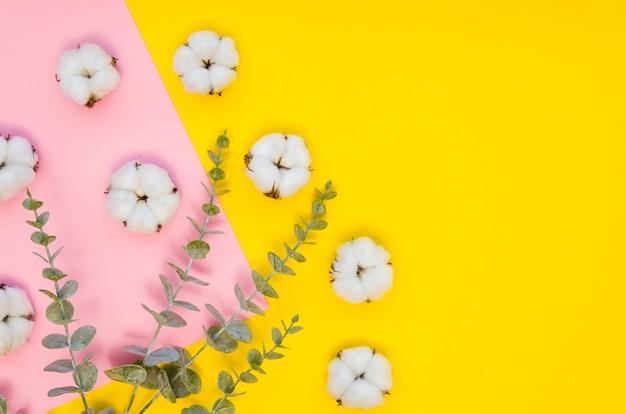 Arranjo de vista superior com flores de algodão Foto gratuita