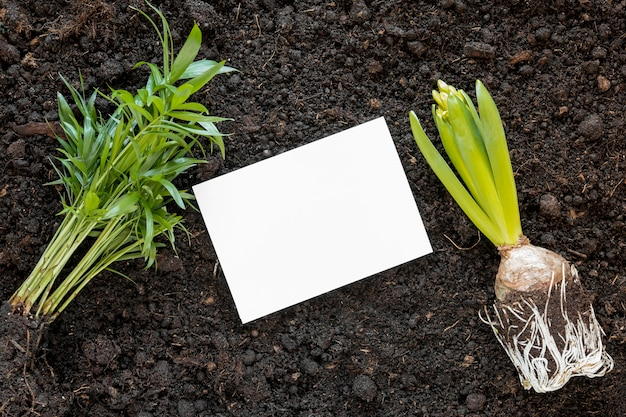 Arranjo do dia mundial do meio ambiente no chão com cartão vazio Foto gratuita