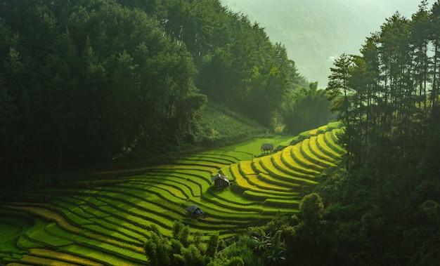 Arrozais em terraços de mu cang chai, yenbai, vietnam. Foto Premium
