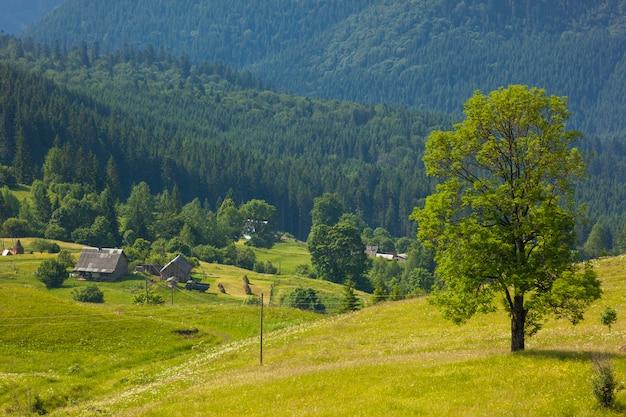 Árvore verde em pé nas montanhas azuis e casas de pastores no pasto verde Foto Premium