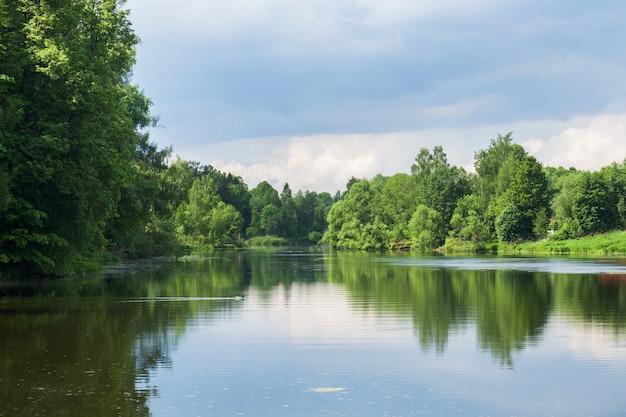 Árvores de floresta no banco do rio. reflexão no rio em um dia de verão ensolarado. Foto Premium