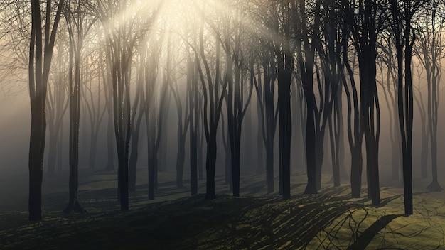 Árvores em um dia nublado Foto gratuita