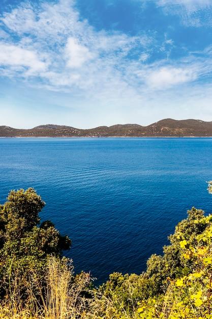 Árvores verdes perto do lago azul com montanha Foto gratuita