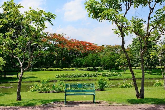 As cadeiras para descansar no parque público têm árvores e céu como o fundo. Foto Premium