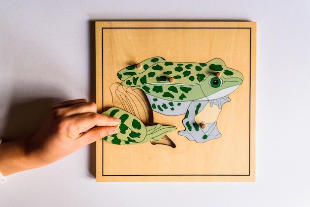As mãos da criança que aprendem para caber partes em um enigma de madeira do animal 3d. Foto Premium
