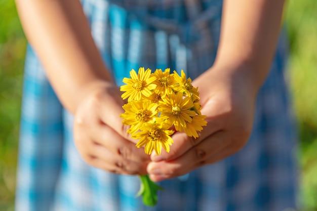 As mãos dão flores silvestres amarelas com amor. sentimentos românticos Foto Premium