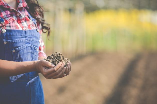 As mulheres agricultoras estão pesquisando o solo. Foto gratuita