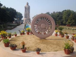 Ashoka chakra Foto gratuita
