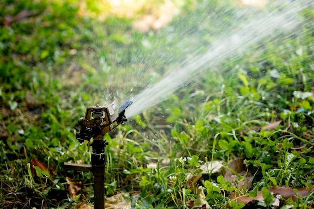 Aspersor de água do gramado pulverização de água sobre Foto Premium