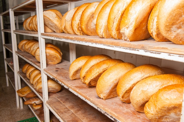Assar pão Foto Premium