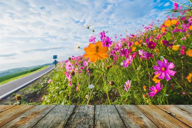 Assoalho de madeira na flor do cosmos da pastagem Foto Premium