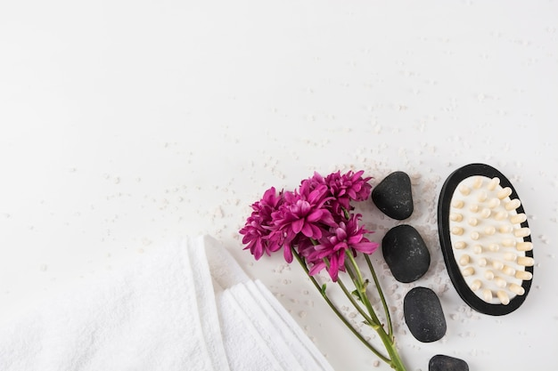 Aster flores; toalha; pedra de spa e massagem pincel no sal sobre fundo branco Foto gratuita