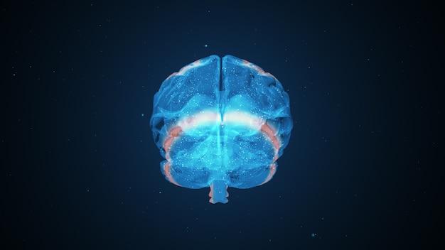 Atividade cerebral extraordinária Foto Premium