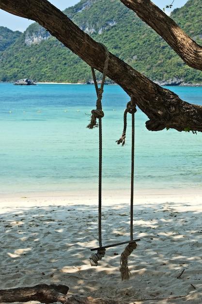 Balance pendurado em uma árvore na praia em uma ilha durante o dia Foto gratuita