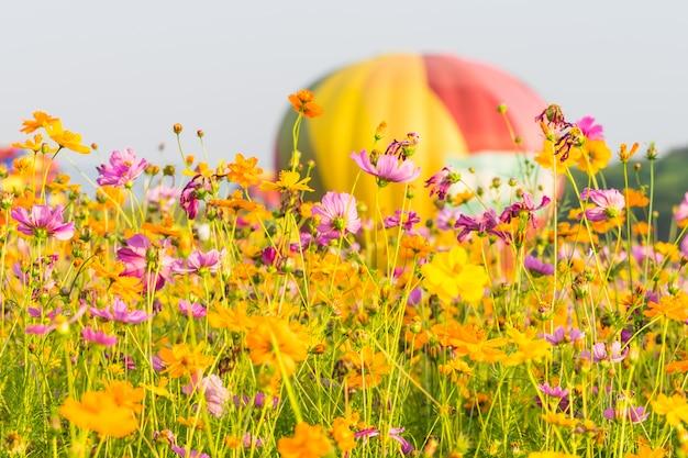 Balão de ar quente de cor no fundo do céu azul Foto Premium