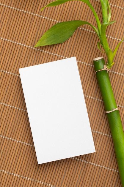 Bambu com folhas e cópia vazia Foto gratuita