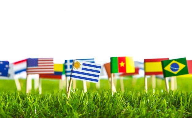 Bandeiras de diferentes países perfurado em um gramado Foto gratuita