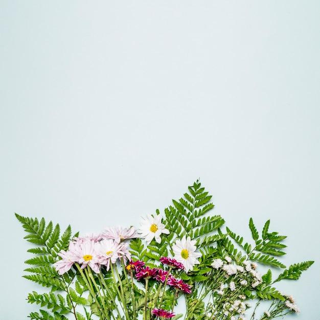 Bando de folhas e flores Foto gratuita
