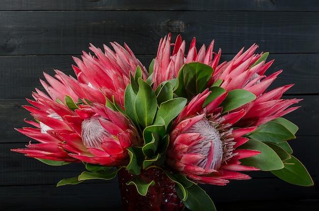 Bando de protea de alcachofra vermelha sobre um fundo escuro de madeira Foto Premium