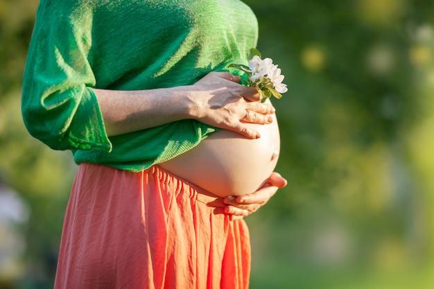 Barriga grávida nua com flor Foto Premium