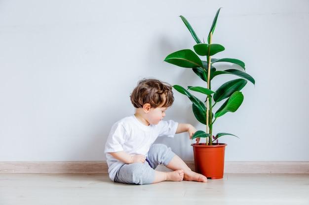 Bebê com planta verde sentado no chão perto da parede branca Foto Premium