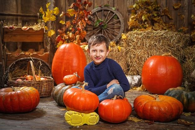 Bebê no feno com abóboras. garoto feliz sentado no chão com abóboras diferentes. Foto Premium