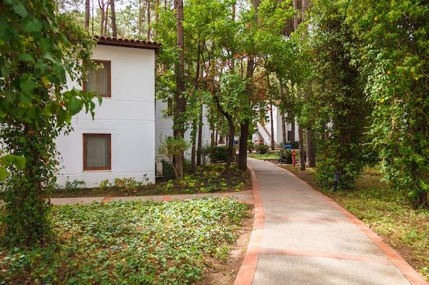 Beco entre as casas do hotel entre os pinheiros Foto Premium