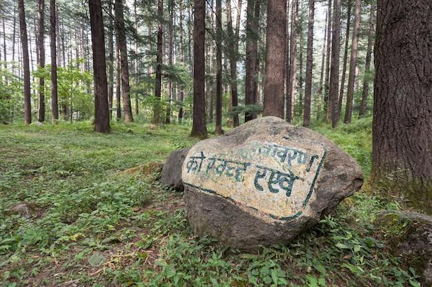 Bela floresta, manali Foto Premium