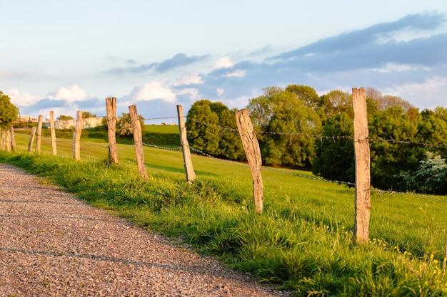 Bela foto da estrada através do campo cercado por árvores Foto gratuita
