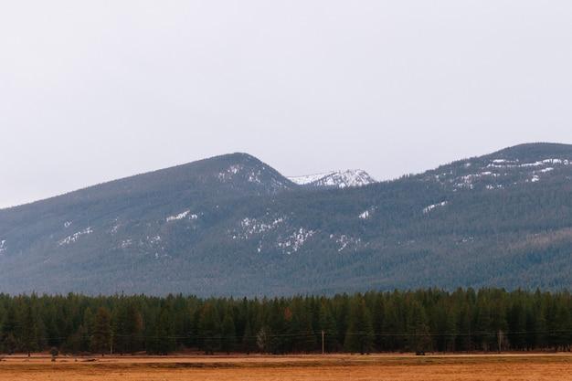 Bela foto de um campo seco com vegetação e altas colinas rochosas e montanhas Foto gratuita