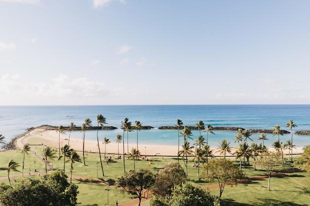 Bela foto de uma praia com um céu azul claro ao fundo Foto gratuita