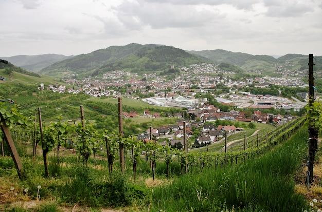 Bela foto de vinhedos verdes e montanhosos com o fundo da cidade de kappelrodeck Foto gratuita