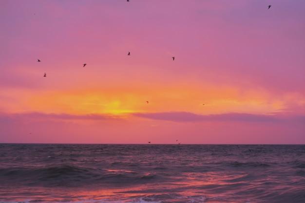 Bela foto do mar com o incrível sol brilhando no horizonte durante o pôr do sol Foto gratuita