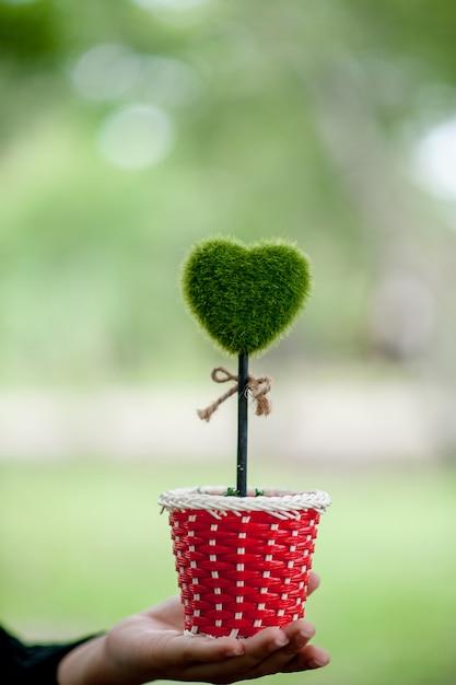 Bela mão verde e imagens de coração conceito de dia dos namorados Foto Premium