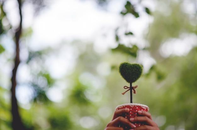 Bela mão verde e imagens de coração dia dos namorados Foto Premium