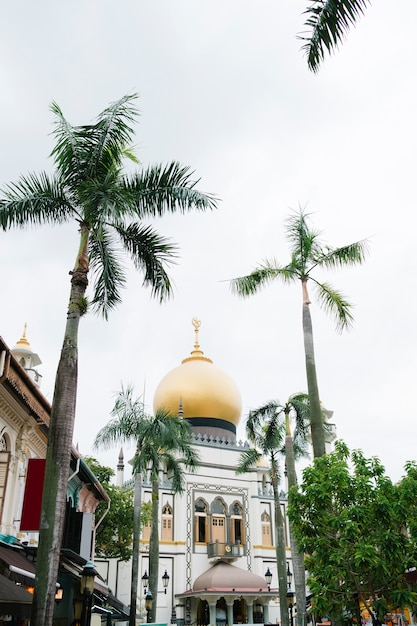 Bela mesquita e palmeira em cingapura Foto gratuita