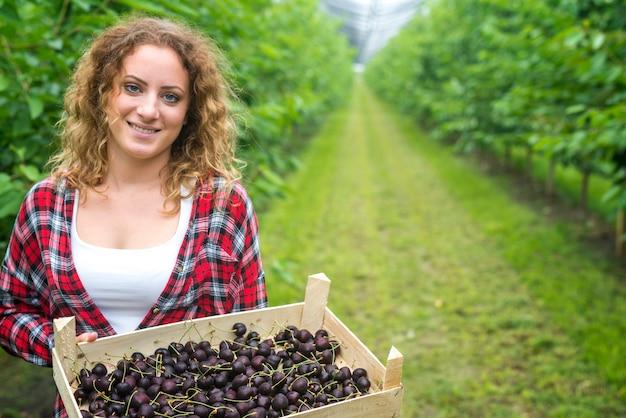 Bela mulher agricultora segurando uma caixa cheia de cerejas em um pomar verde Foto gratuita