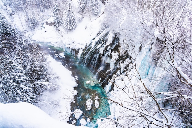 Bela natureza ao ar livre paisagem com shirahige cachoeira e ponte na temporada de inverno neve Foto gratuita