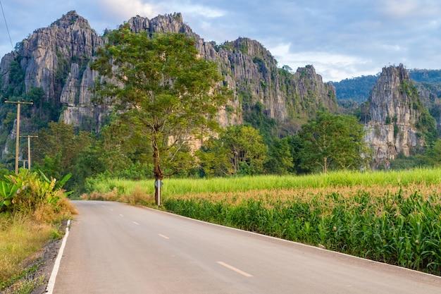 Bela paisagem com estrada, montanhas e céu azul. conceito de viagem Foto Premium