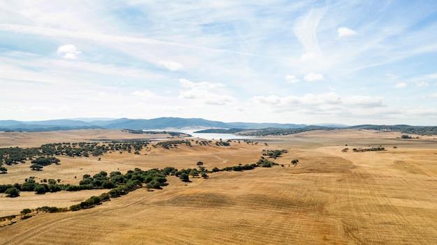Bela paisagem com terra seca Foto gratuita