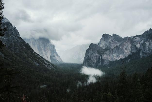 Bela paisagem de pinheiros verdes cercados por altas montanhas rochosas Foto gratuita