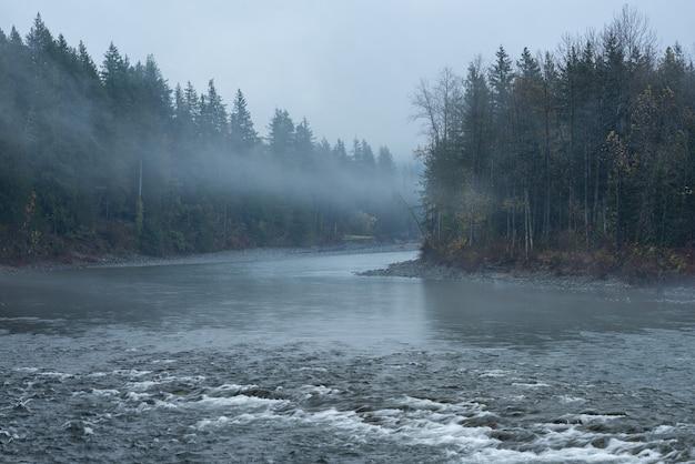 Bela paisagem de um rio cercado por árvores verdes envolto em névoa Foto gratuita