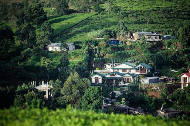 Bela paisagem do ceilão. plantações de chá e casas antigas Foto Premium