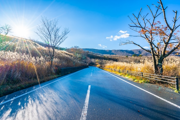 Bela paisagem do lado da estrada ao redor da montanha fuji Foto gratuita