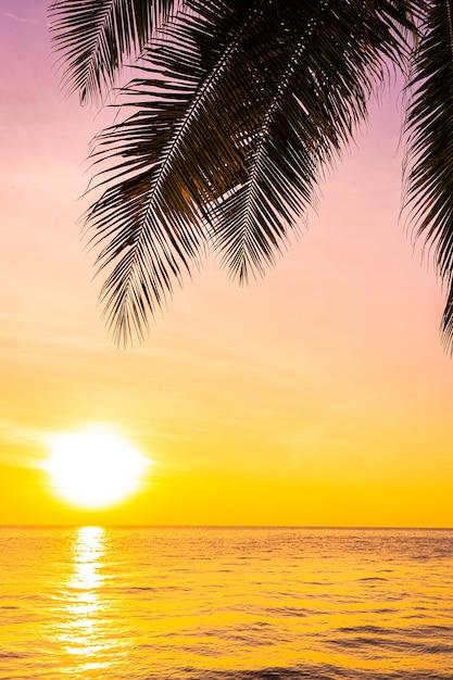 Bela paisagem do mar oceano com silhueta de coqueiro ao pôr do sol ou nascer do sol Foto gratuita